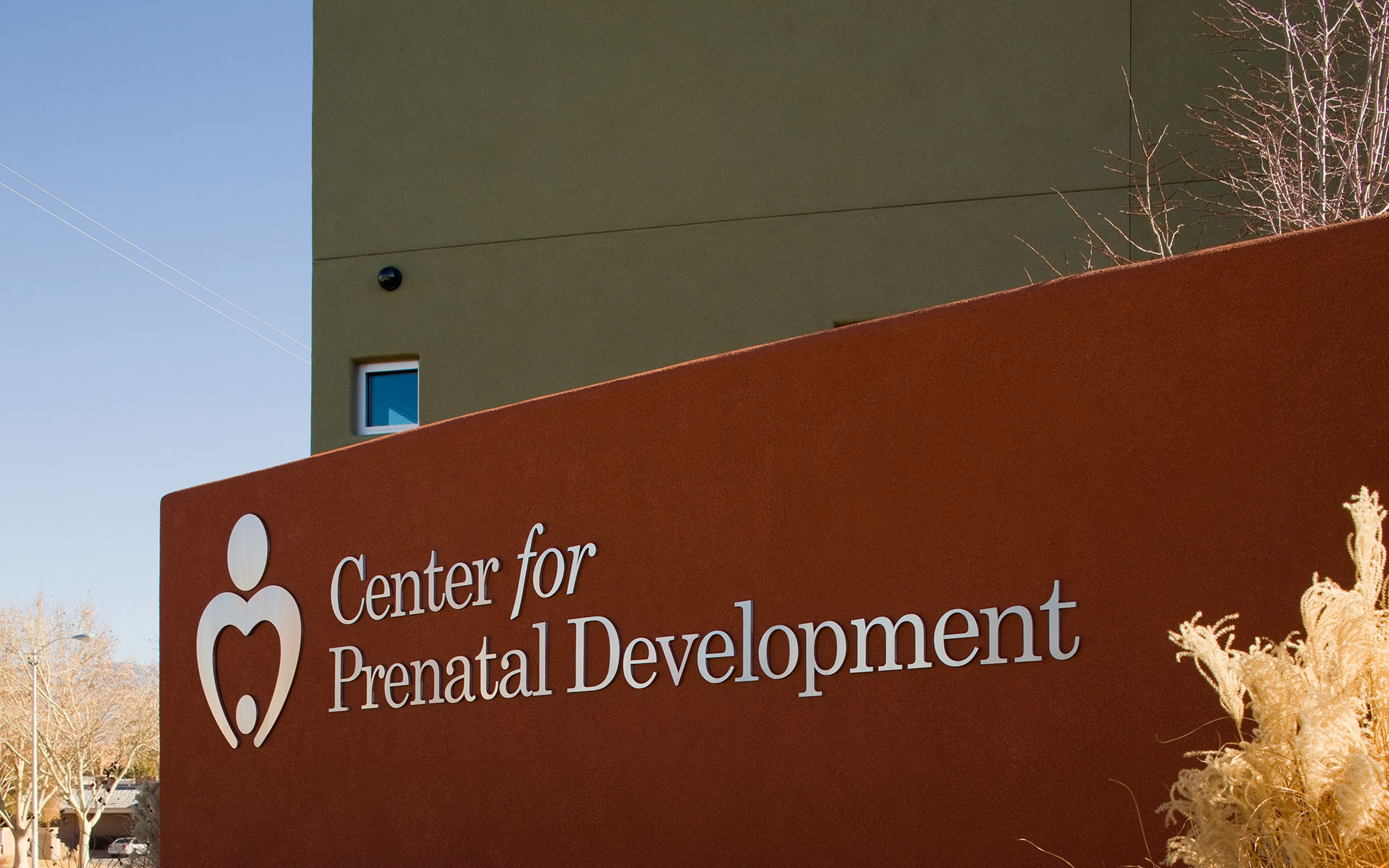 Center for Prenatal Development